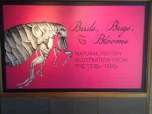 "Entrance to the ""Birds, Bugs and Blooms"" exhibit."