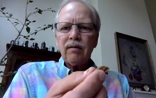 Dr. Hale presents a cicada husk
